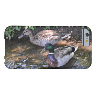A Mated Pair of Mallard Ducks Barely There iPhone 6 Case