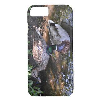 A Mated Pair of Mallard Ducks iPhone 7 Case