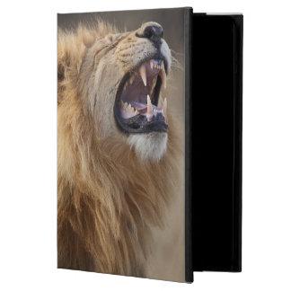 A mature male lion (Panthera leo) in the Savuti iPad Air Case