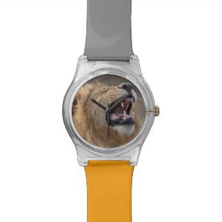 A mature male lion (Panthera leo) in the Savuti Watch