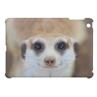A Meerkat looking up at the camera Case For The iPad Mini