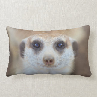 A Meerkat looking up at the camera Lumbar Cushion
