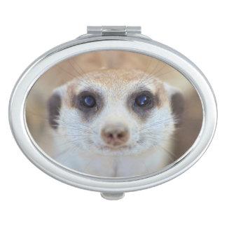 A Meerkat looking up at the camera Makeup Mirrors