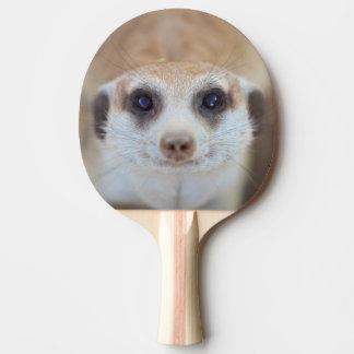 A Meerkat looking up at the camera Ping Pong Paddle
