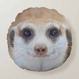 A Meerkat looking up at the camera Round Cushion