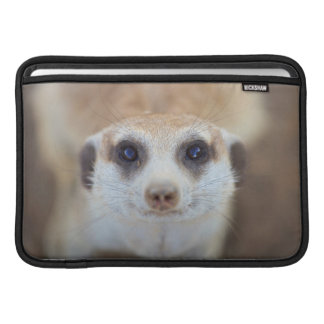 A Meerkat looking up at the camera Sleeve For MacBook Air
