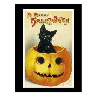 A Merry Haloween Kitten Postcard