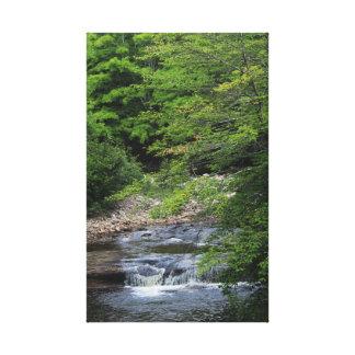 A Miniature Waterfall Canvas Print