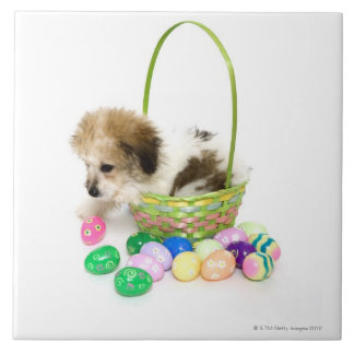 A mixed breed puppy sitting in an Easter basket Large Square Tile