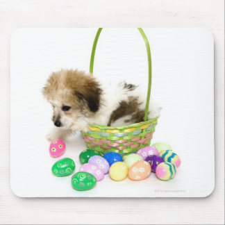 A mixed breed puppy sitting in an Easter basket Mouse Pad