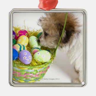 A mixed breed puppy sniffing at an Easter basket Christmas Ornament