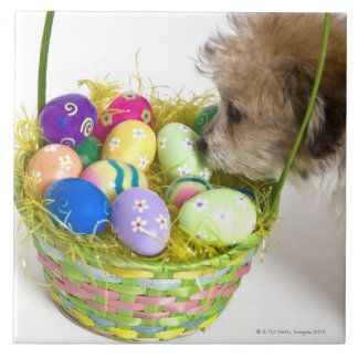 A mixed breed puppy sniffing at an Easter basket Large Square Tile