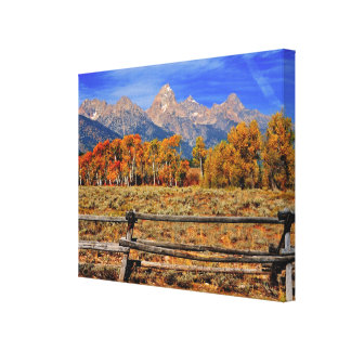 A Moment in Wyoming in Autumn Canvas Print