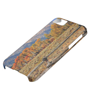 A Moment in Wyoming in Autumn iPhone 5C Case