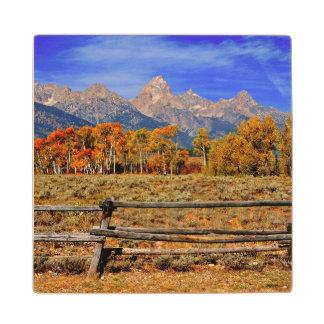 A Moment in Wyoming in Autumn Wood Coaster
