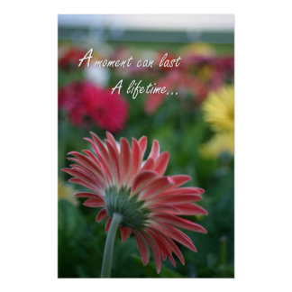A Moment Pink Gerbera Daisy quote Poster