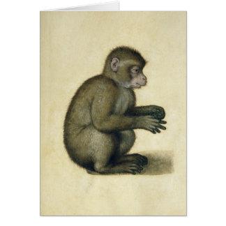 A Monkey Card