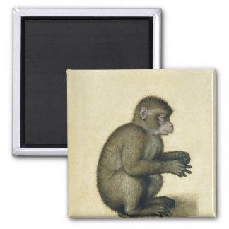 A Monkey Square Magnet