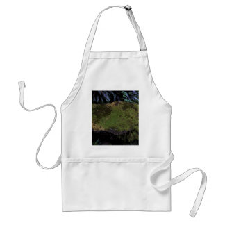 A moss covered stone aprons