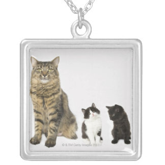 A mother with her four kittens all sitting silver plated necklace