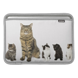 A mother with her four kittens all sitting sleeve for MacBook air
