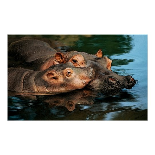 A Mother's Care Hippopotamus Portrait Poster