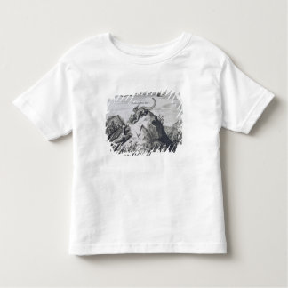 A Mountain in the Jiangxi Province with Crags Know Toddler T-Shirt