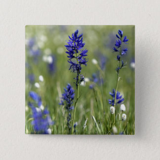 A mountain meadow of wildflowers including 15 cm square badge