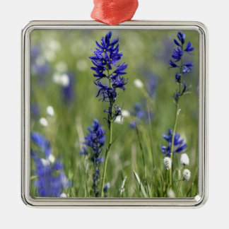 A mountain meadow of wildflowers including Silver-Colored square decoration