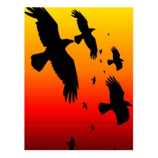 A Murder of Crows Against A Haunting Sunset Postcard