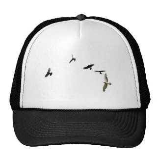 A Murder of Crows Cap