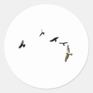 A Murder of Crows Classic Round Sticker