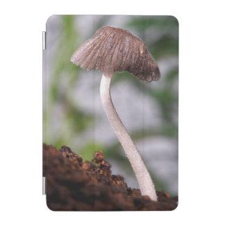 A Mushroom iPad Mini Cover