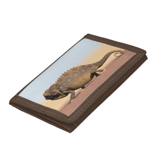 A Namaqua Chameleon walking across a sandy plain Tri-fold Wallets