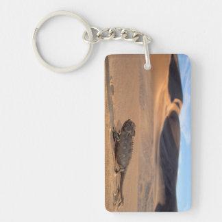 A Namaqua Chameleon walking Key Ring