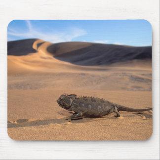 A Namaqua Chameleon walking Mouse Mat