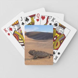 A Namaqua Chameleon walking Playing Cards