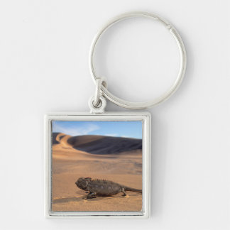 A Namaqua Chameleon walking Silver-Colored Square Key Ring