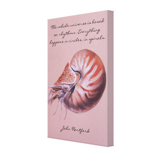A Nautilus Shell Canvas Print