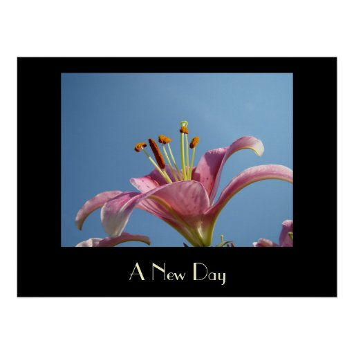 A NEW DAY art prints Pink Calla Lily Flowers Art Poster