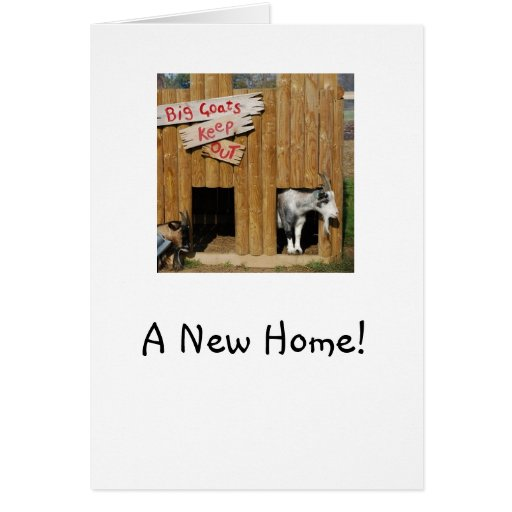 """""""A New Home"""" House Warming Card Pygmy Goats"""