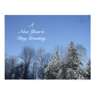 A New Year's Day Greeting Postcard