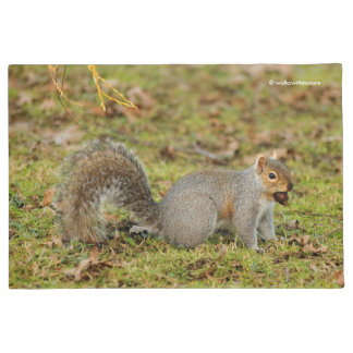 A Nutty Eastern Grey Squirrel Doormat