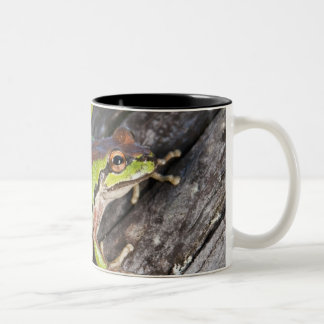 A Pacific treefrog perched on a log Two-Tone Coffee Mug
