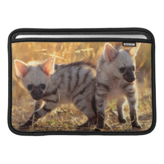 A pair of Aardwolf cubs at play Sleeve For MacBook Air