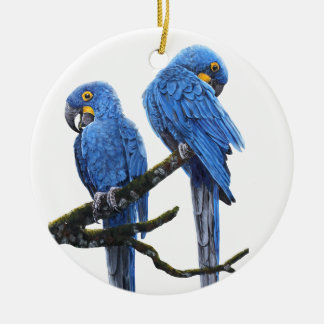 A pair of bright blue Hyacinth Macaws Christmas Ornament