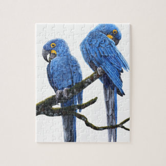 A pair of bright blue Hyacinth Macaws Jigsaw Puzzle