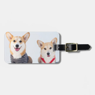 A Pair Of Corgis Sitting On A Bench Luggage Tag