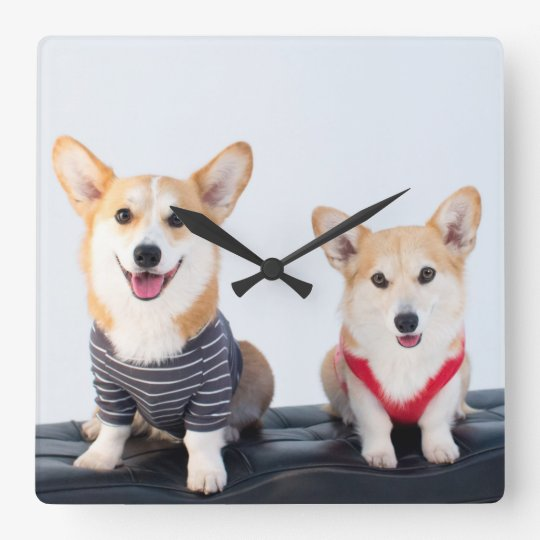 A Pair Of Corgis Sitting On A Bench Square Wall Clock