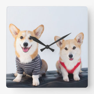 A Pair Of Corgis Sitting On A Bench Wall Clock